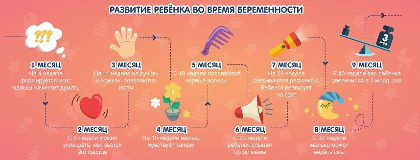 Флюорография на ранних сроках беременности: как она влияет на плод