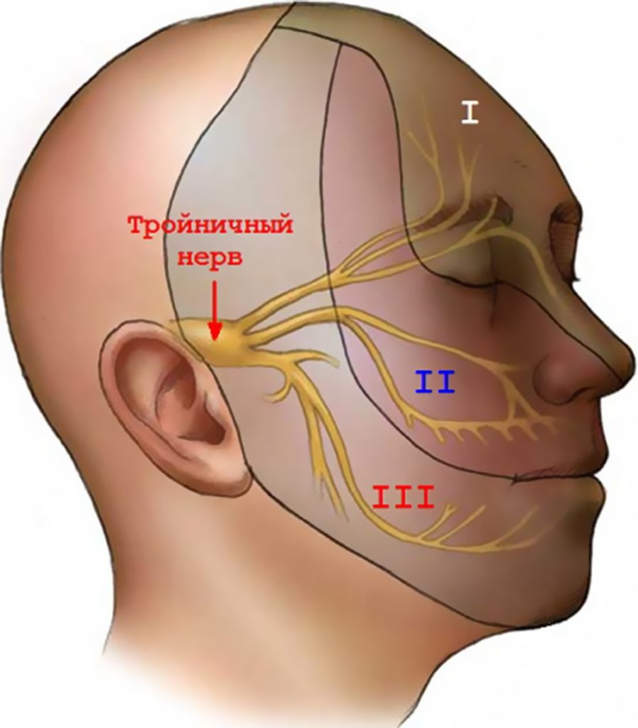 Исследование тройничного нерва при помощи МРТ