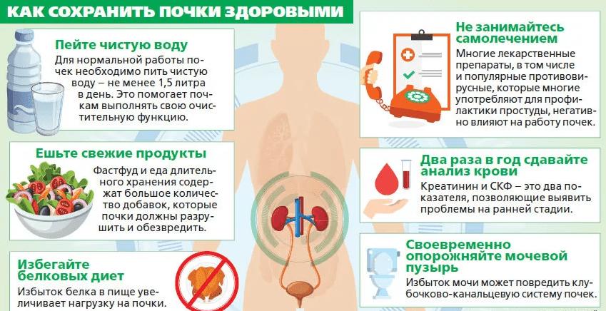 Как сохранить здоровье почек